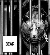 One-Punch Man Bear